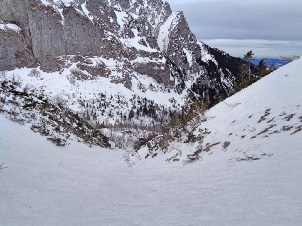 Żółtym szlakiem do Doliny Małej Łąki