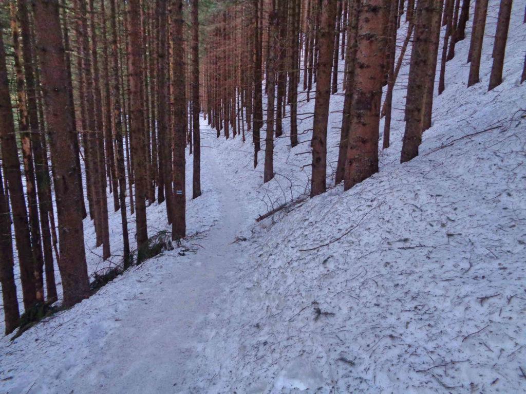 Szlak na Halę Kondratową