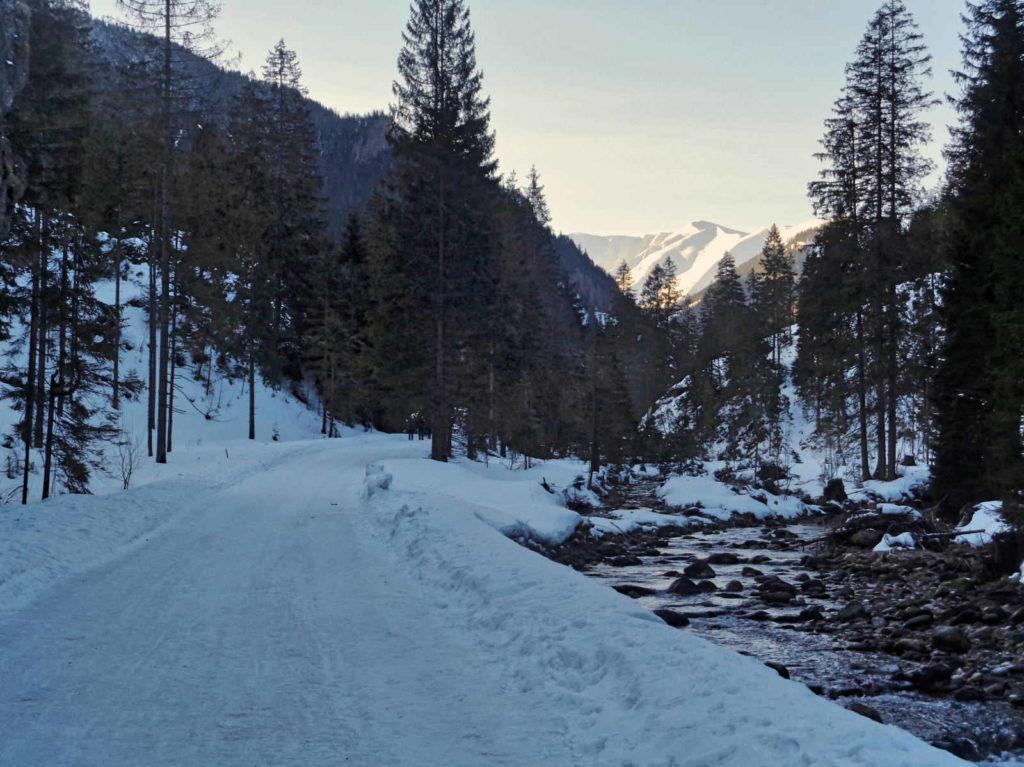 Szlak przy Chochołowskim Potoku