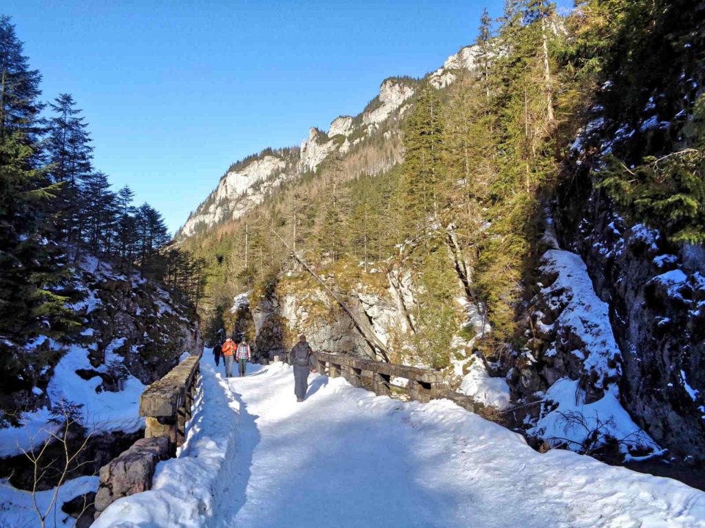 Zielonym Szlakiem przez Dolinę Kościeliską