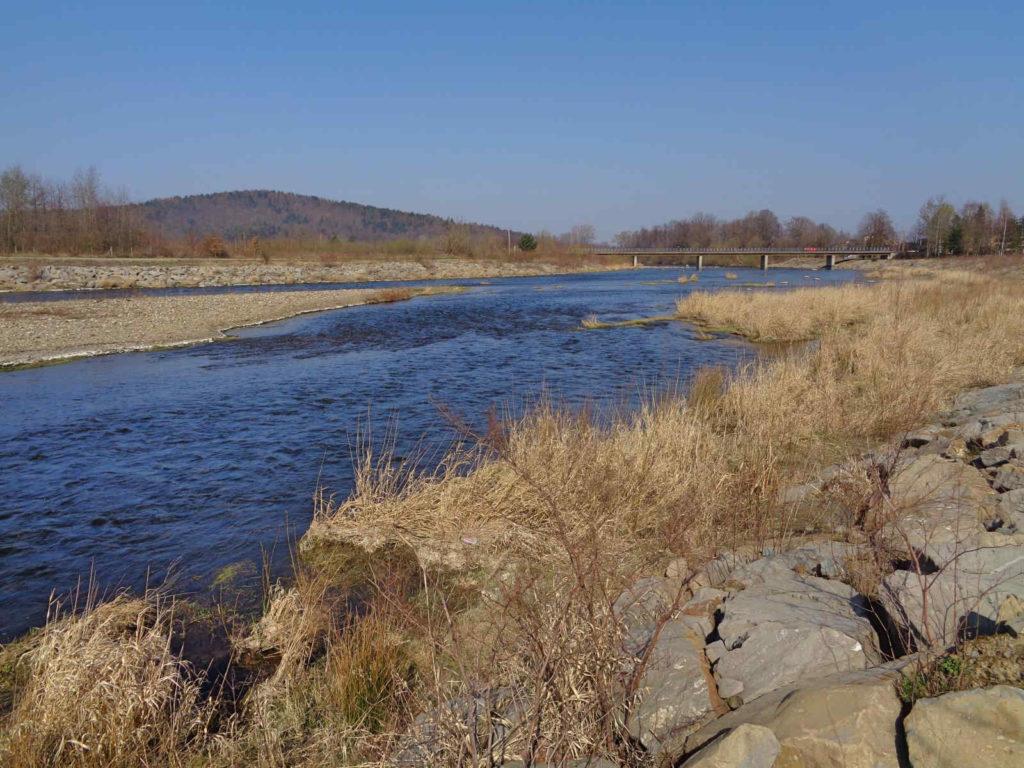 Rzeka Skawa i Goryczkowiec