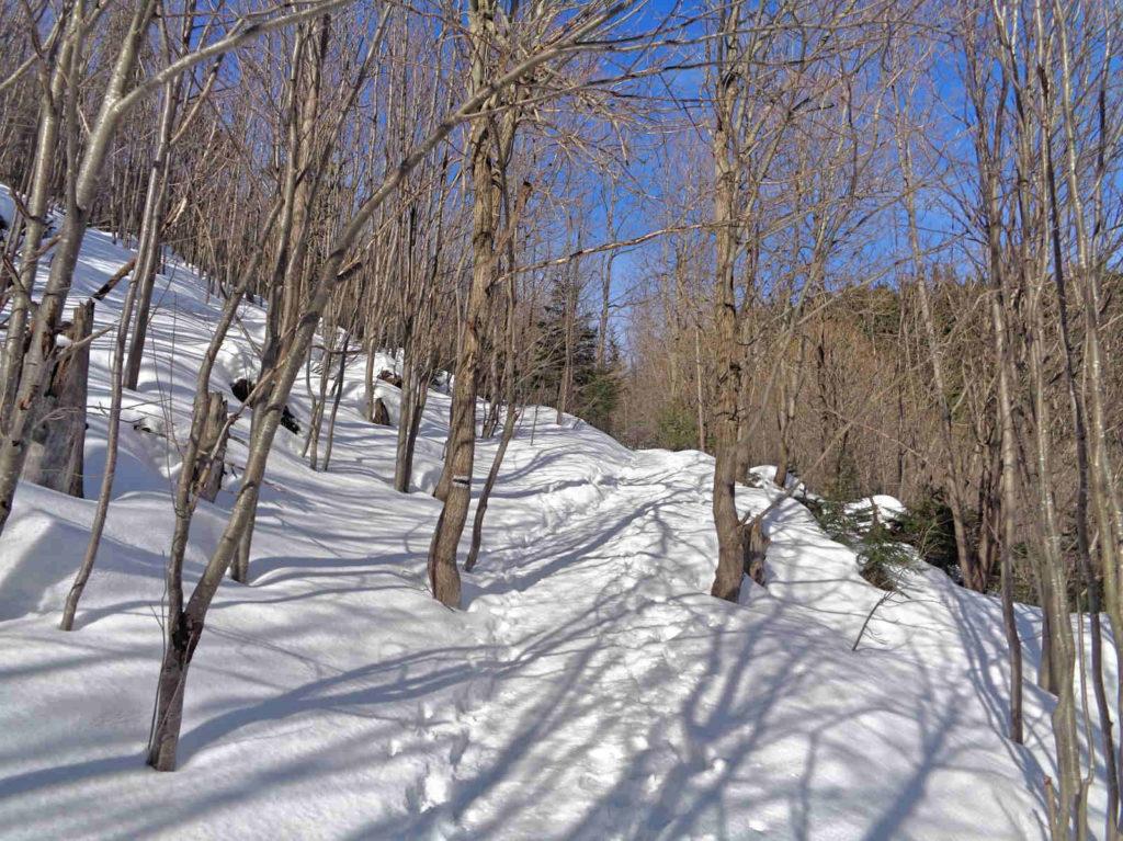 Ścieżka pod Reglami w zimie