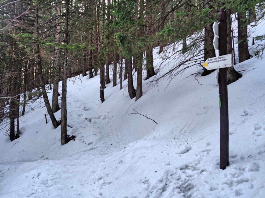 Odejście żółtego szlaku do Doliny Białego