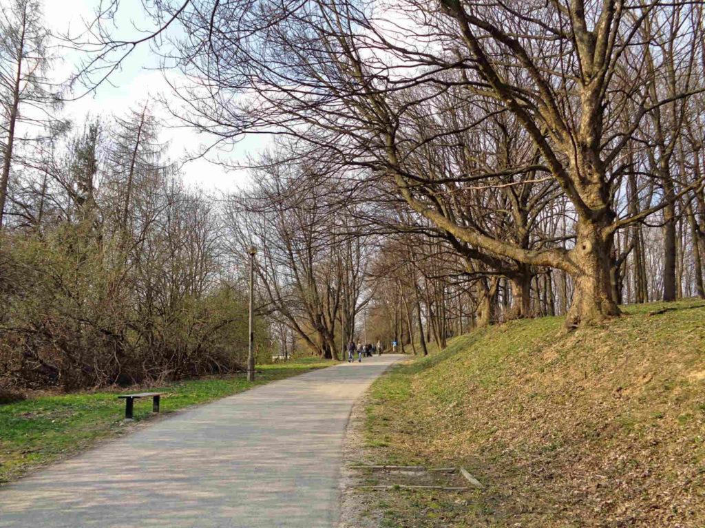 Sikornik, ścieżka spacerowa na Alei Waszyngtona
