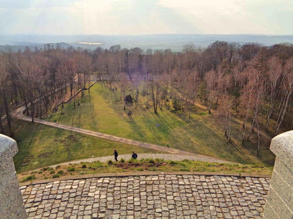 Las Wolski, widok z Kopca Piłsudskiego