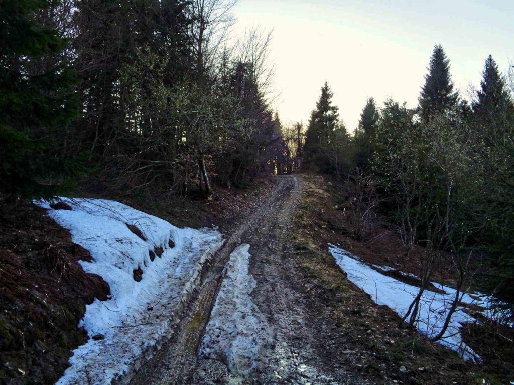 Lubań - resztki śniegu na szlaku