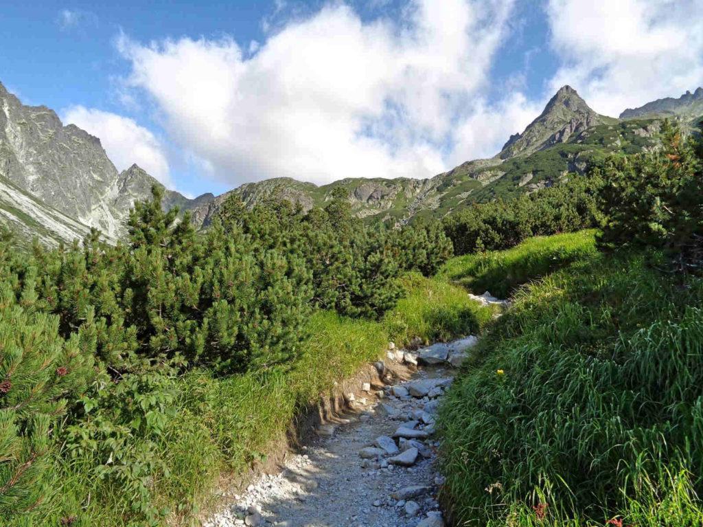 Szlak przez Dolinę Mięguszowiecką