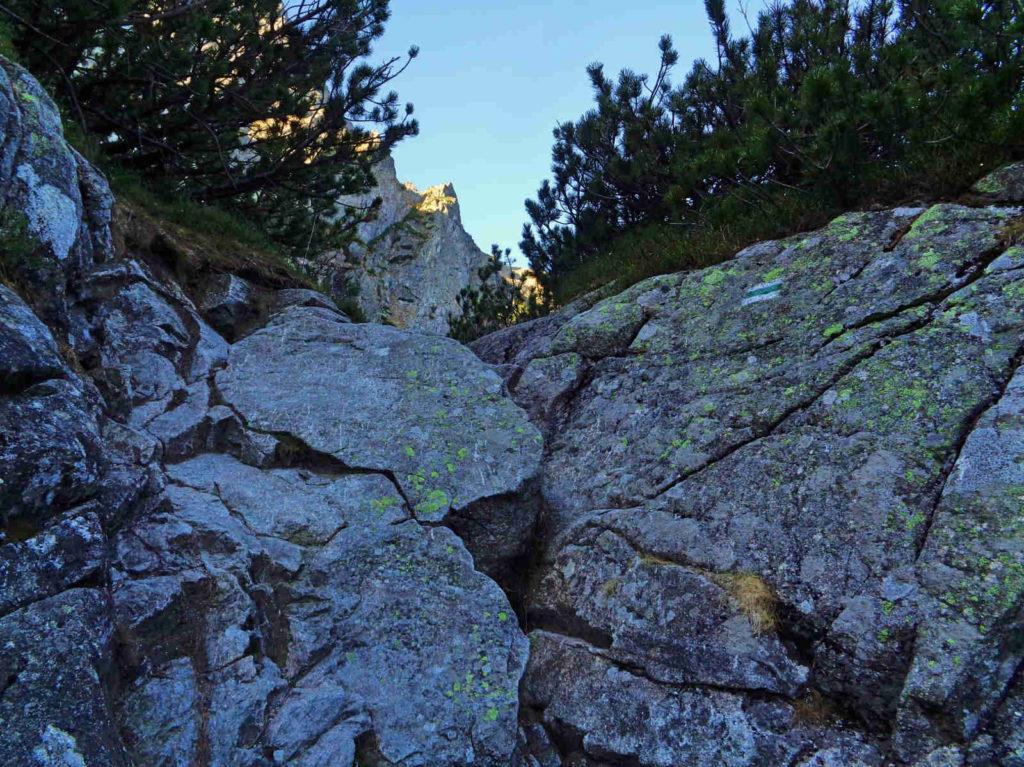 Przełęcz pod Chłopkiem, szlak zielony