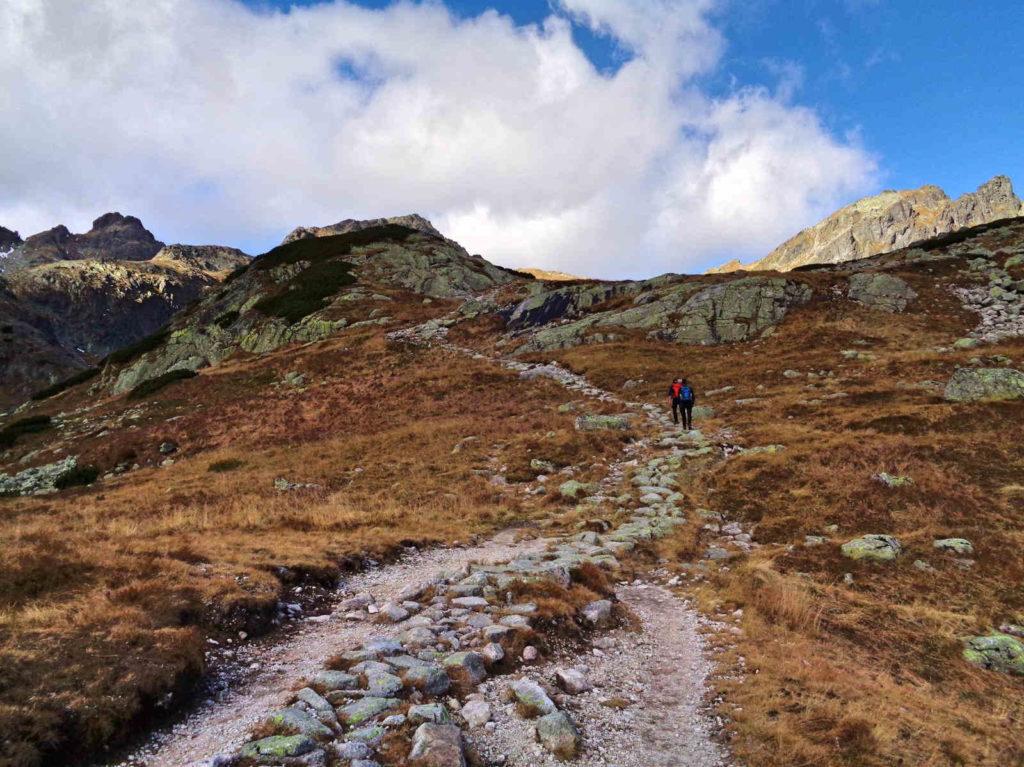 Dolina Staroleśna, żółty szlak