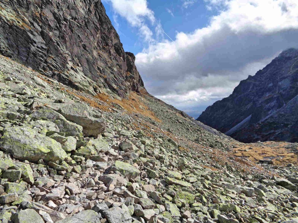 Żółty szlak w Dolinie Staroleśnej