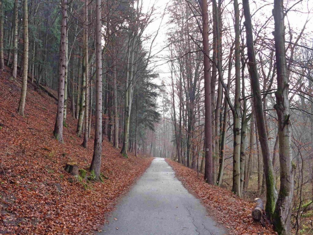 Droga Pienińska jesienią