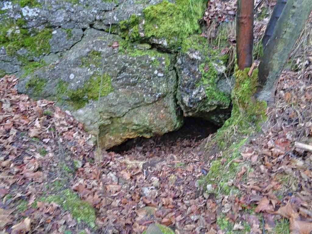 Jaskinia Niska, Kraków
