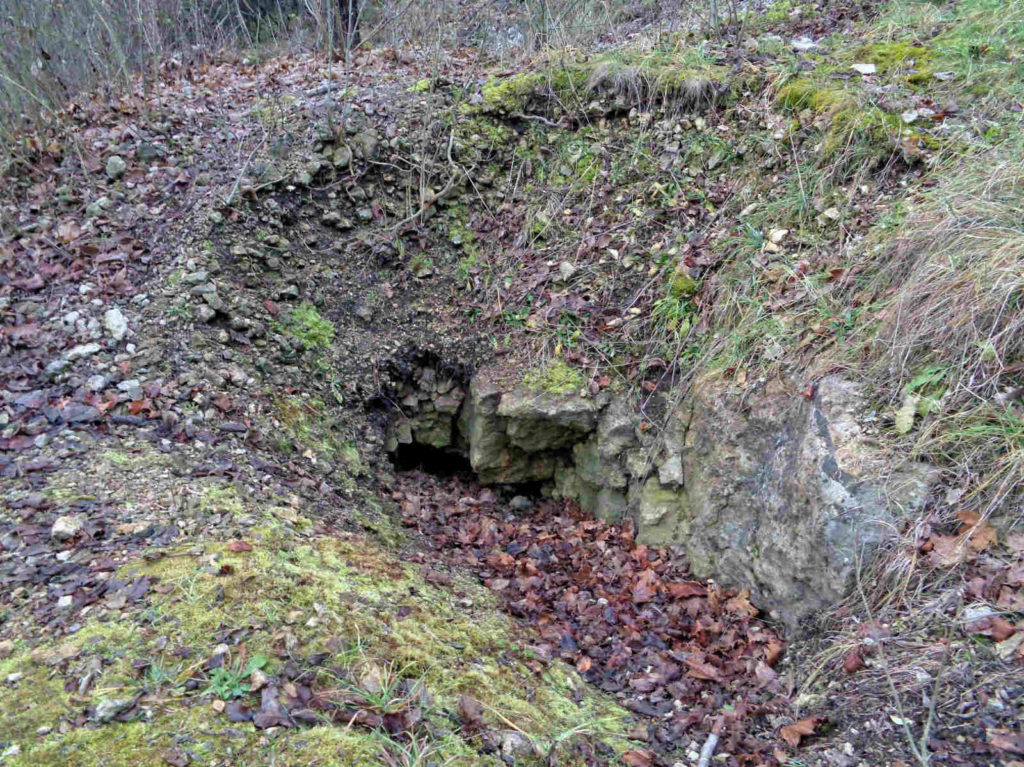 Jaskinia Twardowskiego, wejścia