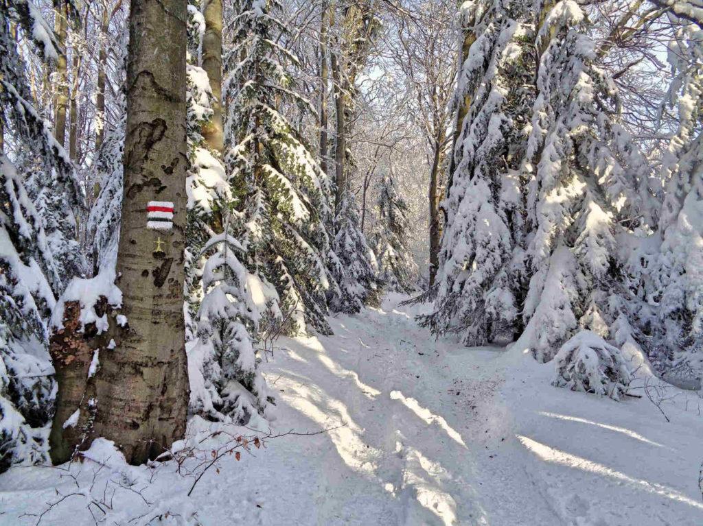 Lubogoszcz, szlaki w zimie