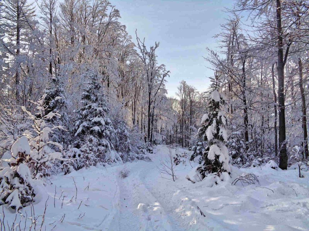 Lubogoszcz, wejście zimą