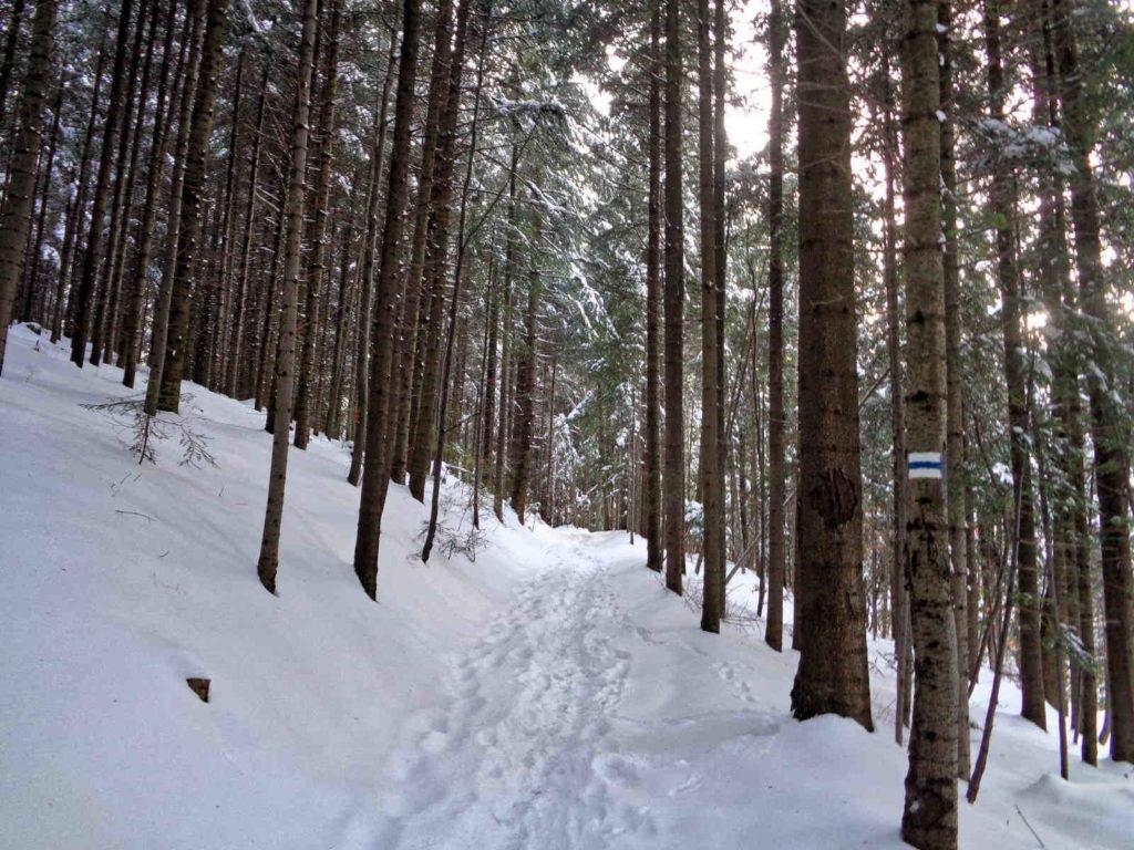 Niebieski szlak na Mogielicę