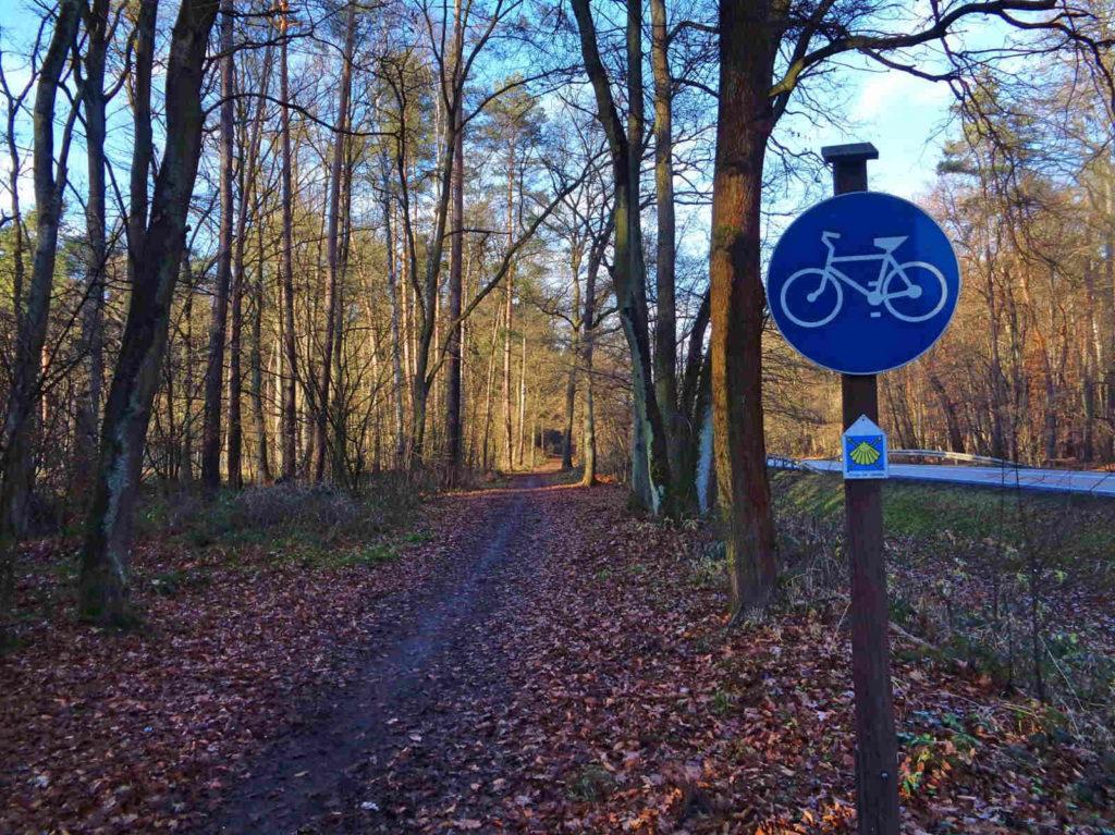 Puszcza Niepołomicka, drogi dla rowerów
