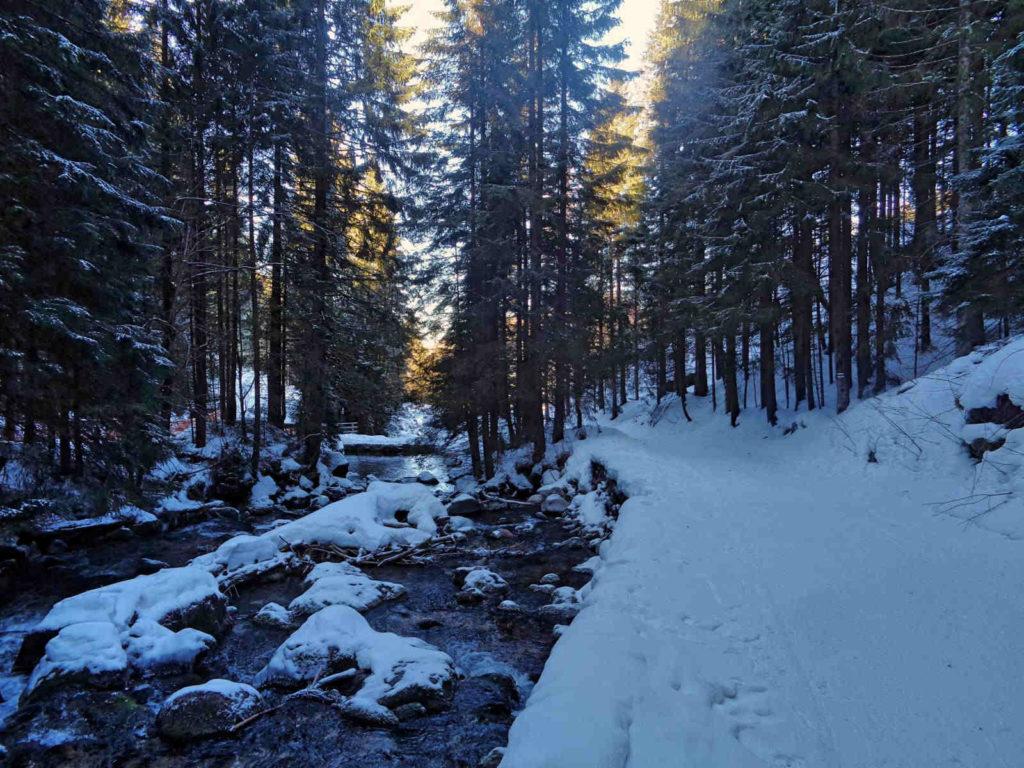 Kasprowy Wierch, zielony szlak