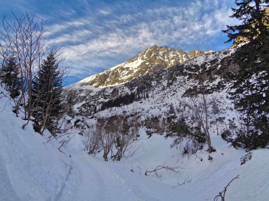 Dolina Roztoki zimą
