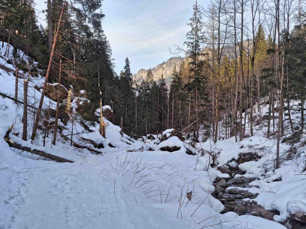 Dolina Jaworzynki zimą