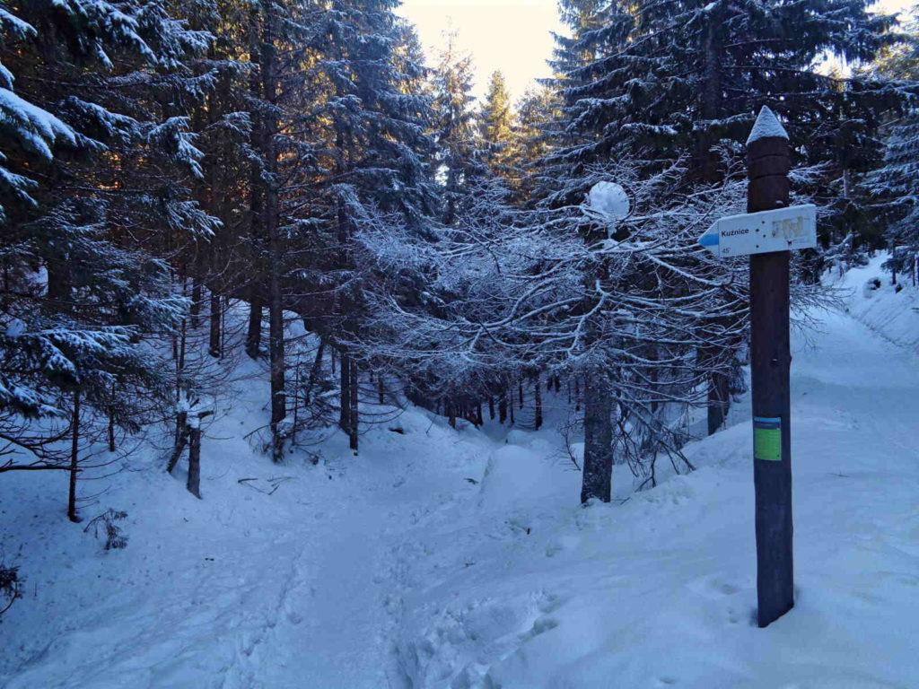 Hala Kondratowa, szlak w zimie