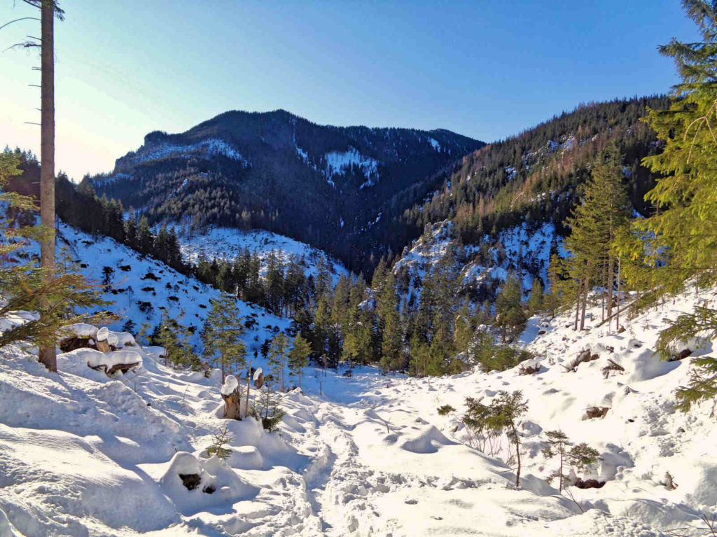 Ścieżka nad Reglami, Dolina Chochołowska