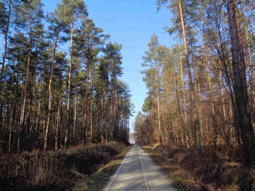 Szlaki koło Alwerni