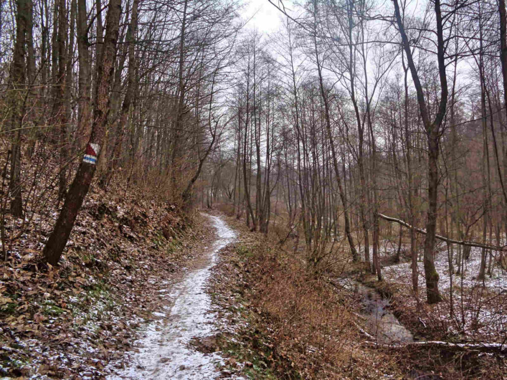 Dolina Brzoskwinki