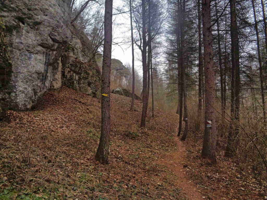 Dolina Brzoskwinki, szlaki