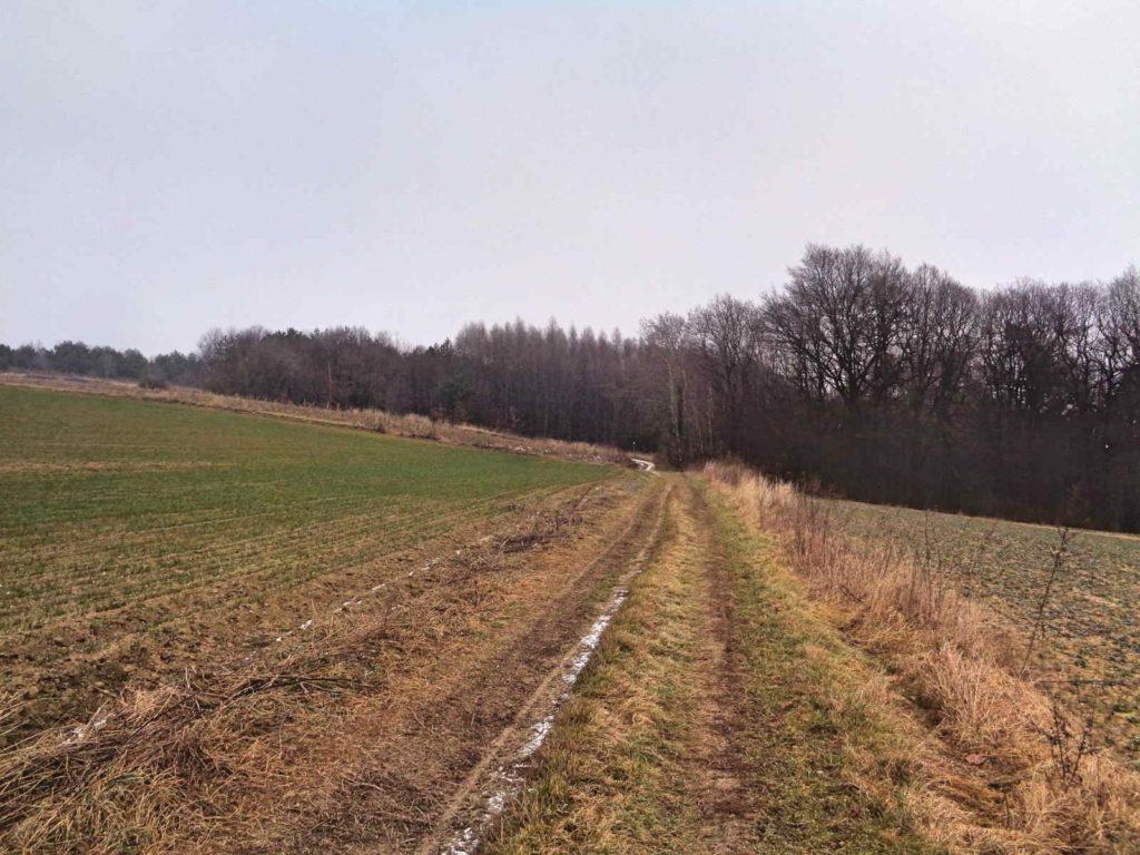 Szlak Mników - Zabierzów