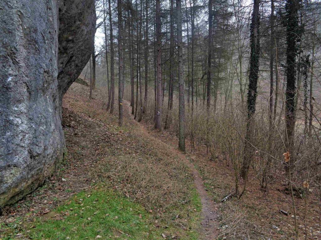 Szlaki w Dolinie Brzoskwinki