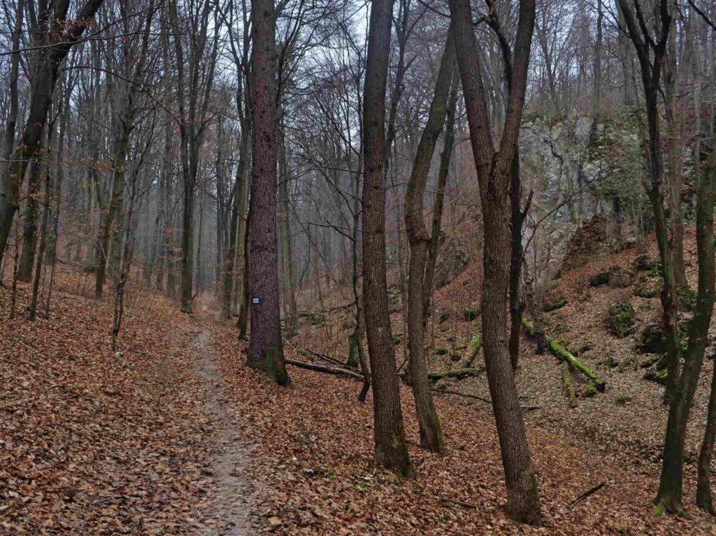 Wąwóz Półrzeczki, szlaki