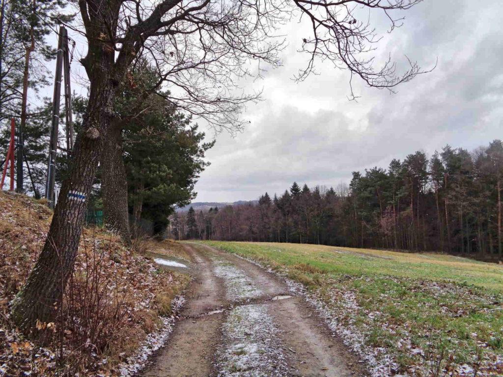Niebieski Szlak Sułkowickich Kowali