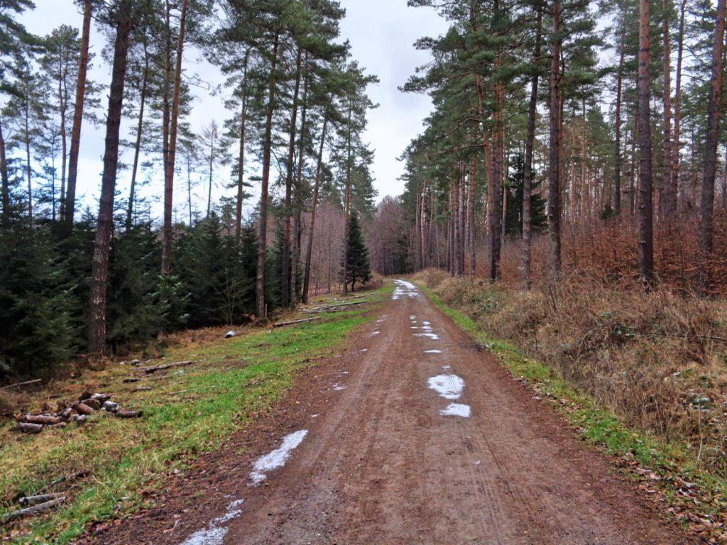 Szlak Sułkowice - Skawina