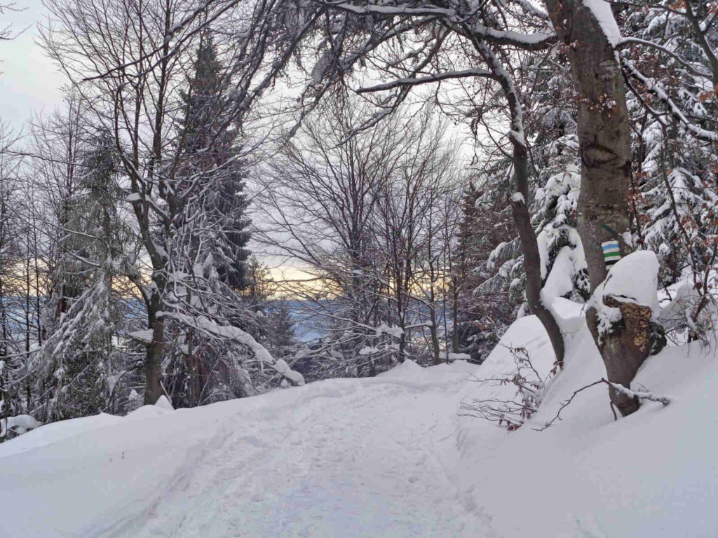 Turbacz, szlaki zimą