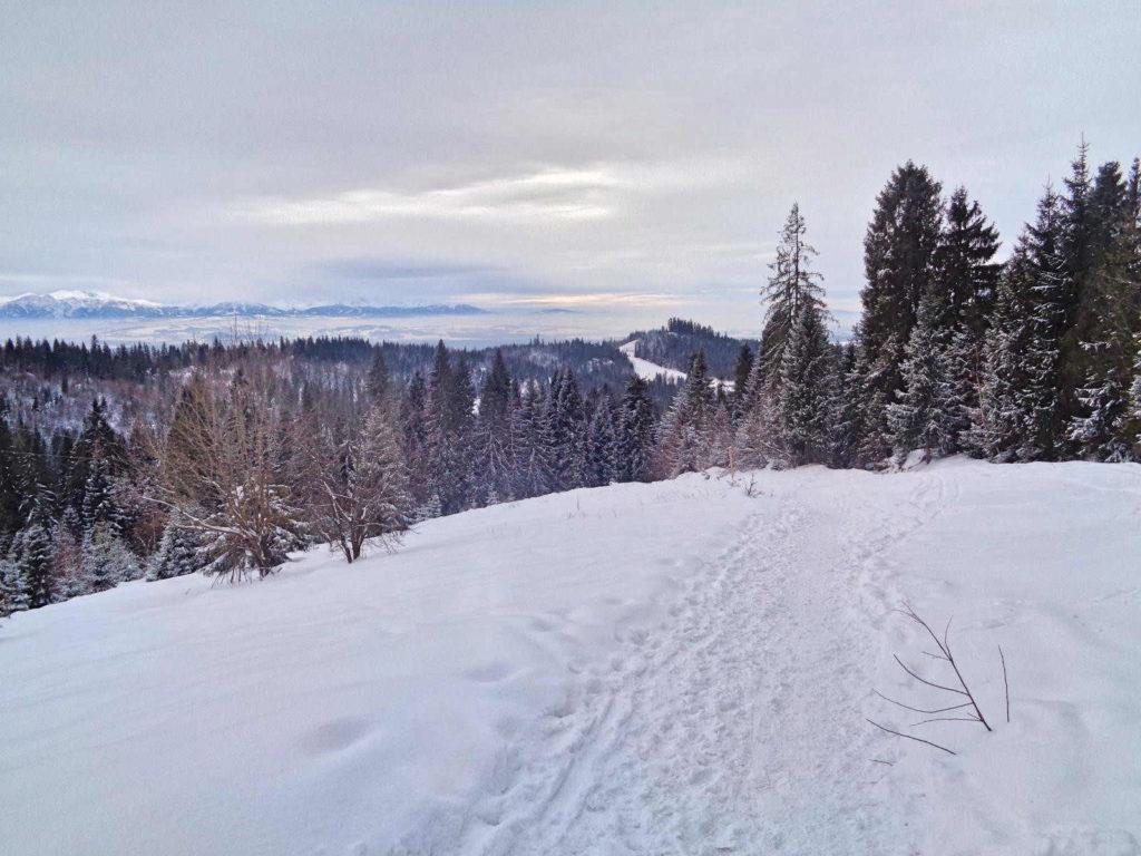 Turbacz, zielony szlak zimą