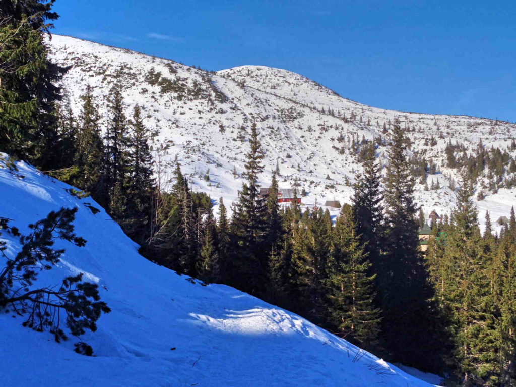 Czarny Staw Gąsienicowy, niebieski szlak