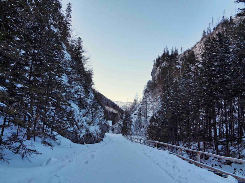 Dolina Chochołowska, spacer w zimie