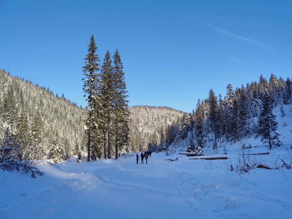 Dolina Chochołowska, spacer zimą