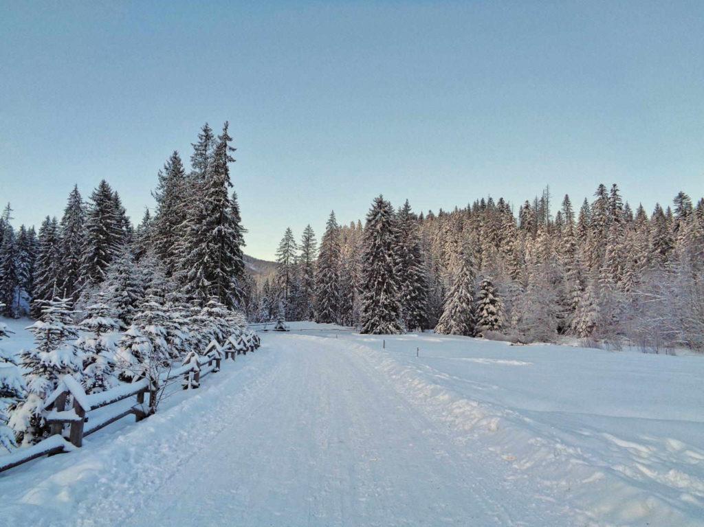 Dolina Chochołowska, szlak w zimie
