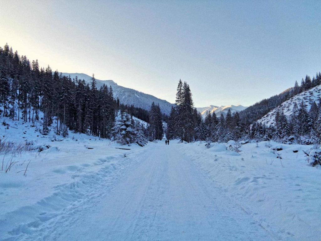Dolina Chochołowska, zielony szlak zimą