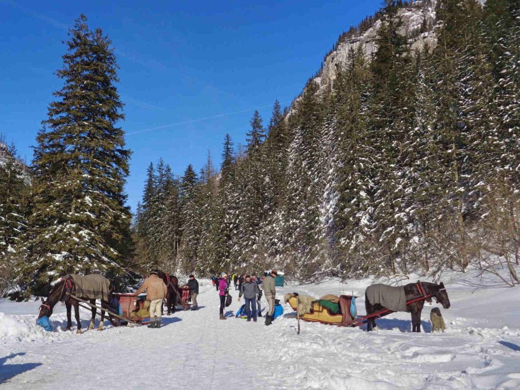 Dolina Kościeliska, dorożki w zimie