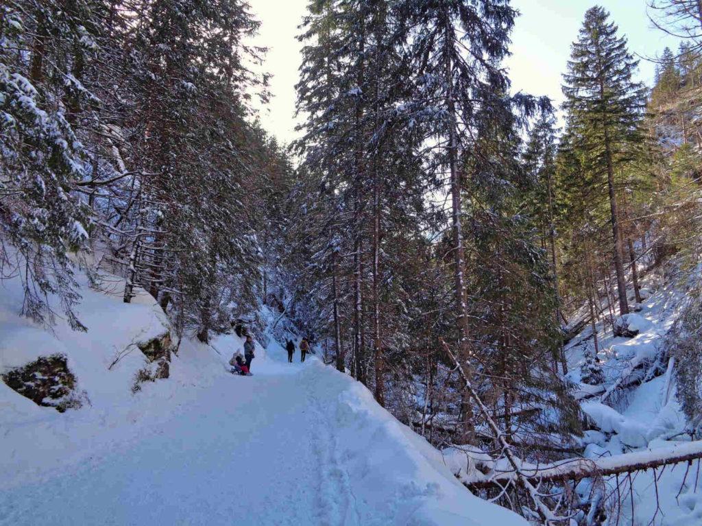 Dolina Kościeliska, spacer w zimie