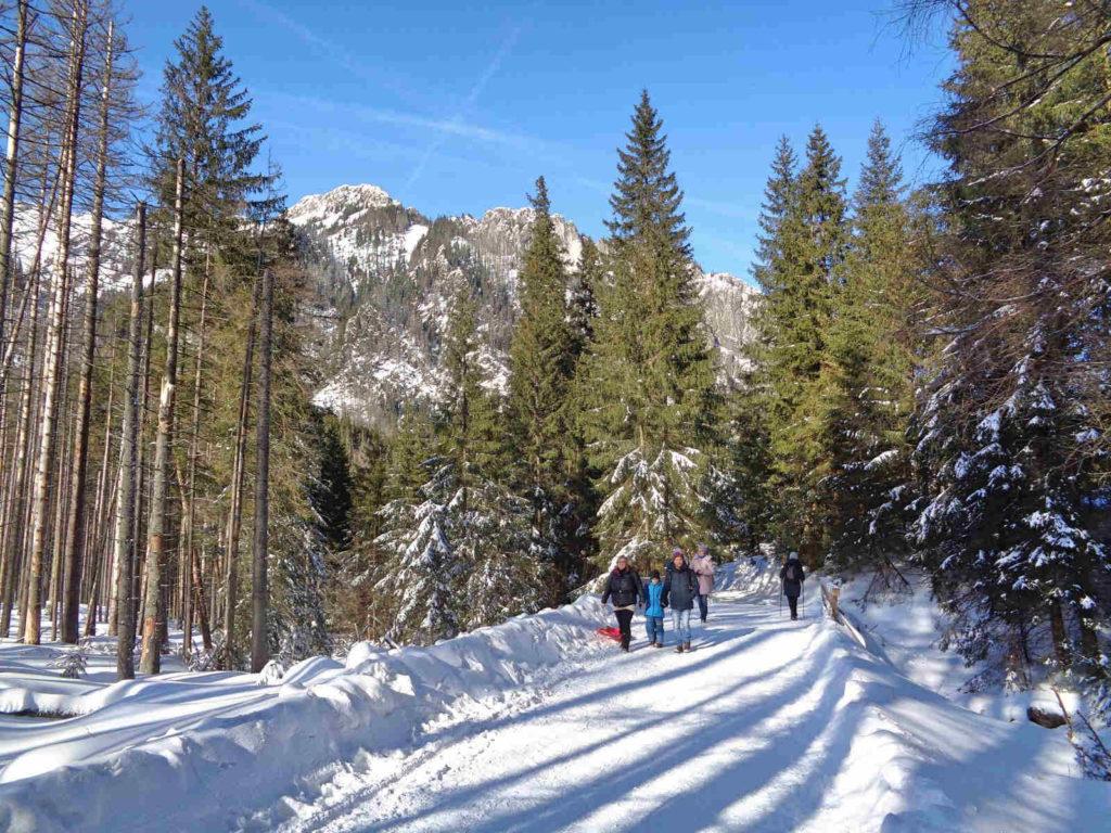 Dolina Kościeliska, spacer zimą
