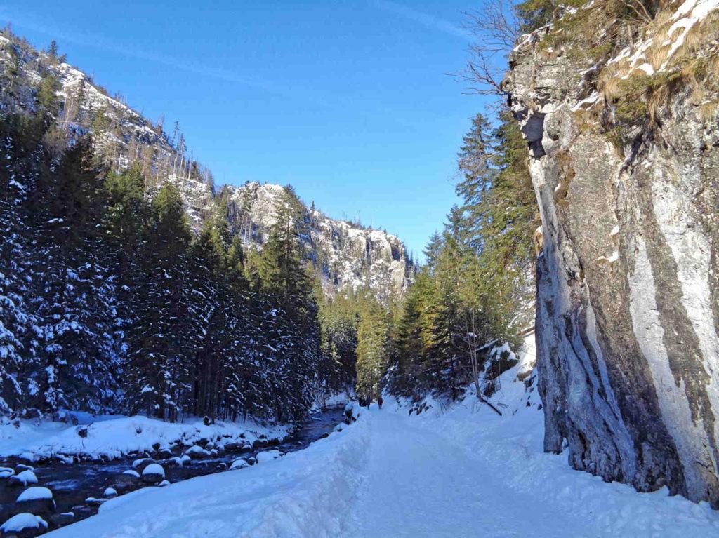 Dolina Kościeliska, szlak zimą