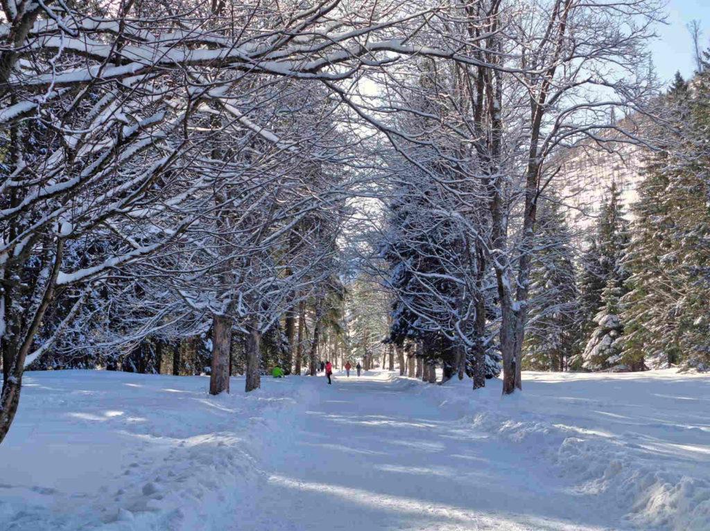 Dolina Kościeliska, zielony szlak