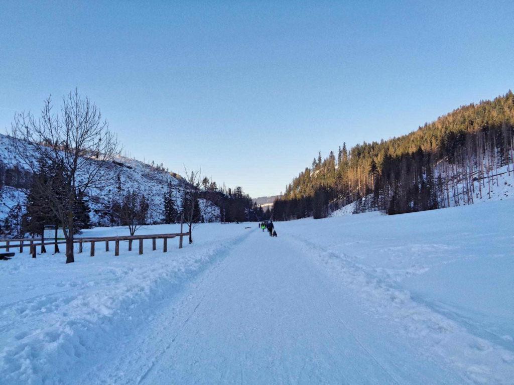Dolina Kościeliska, zielony szlak zimą