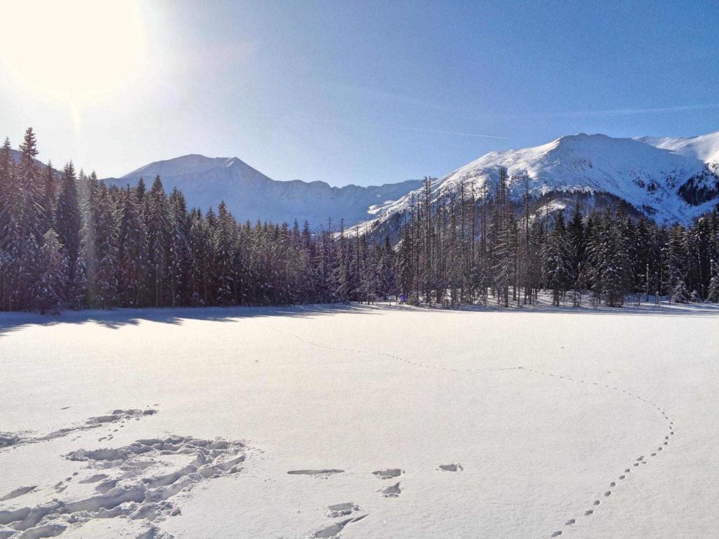 Smreczyński Staw zimą