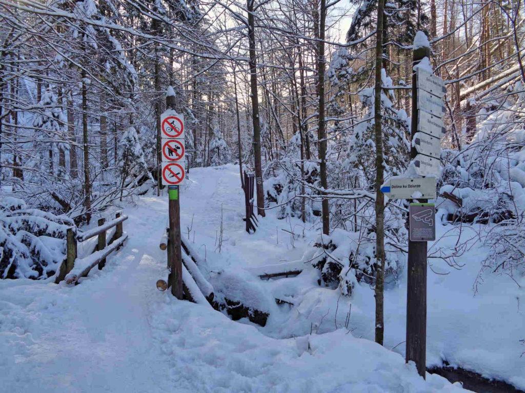 Dolina ku Dziurze, szlak w zimie