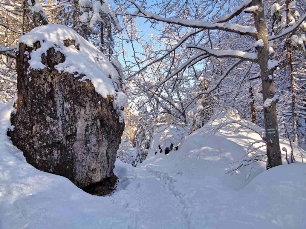 Dolina za Bramką, szlak w zimie